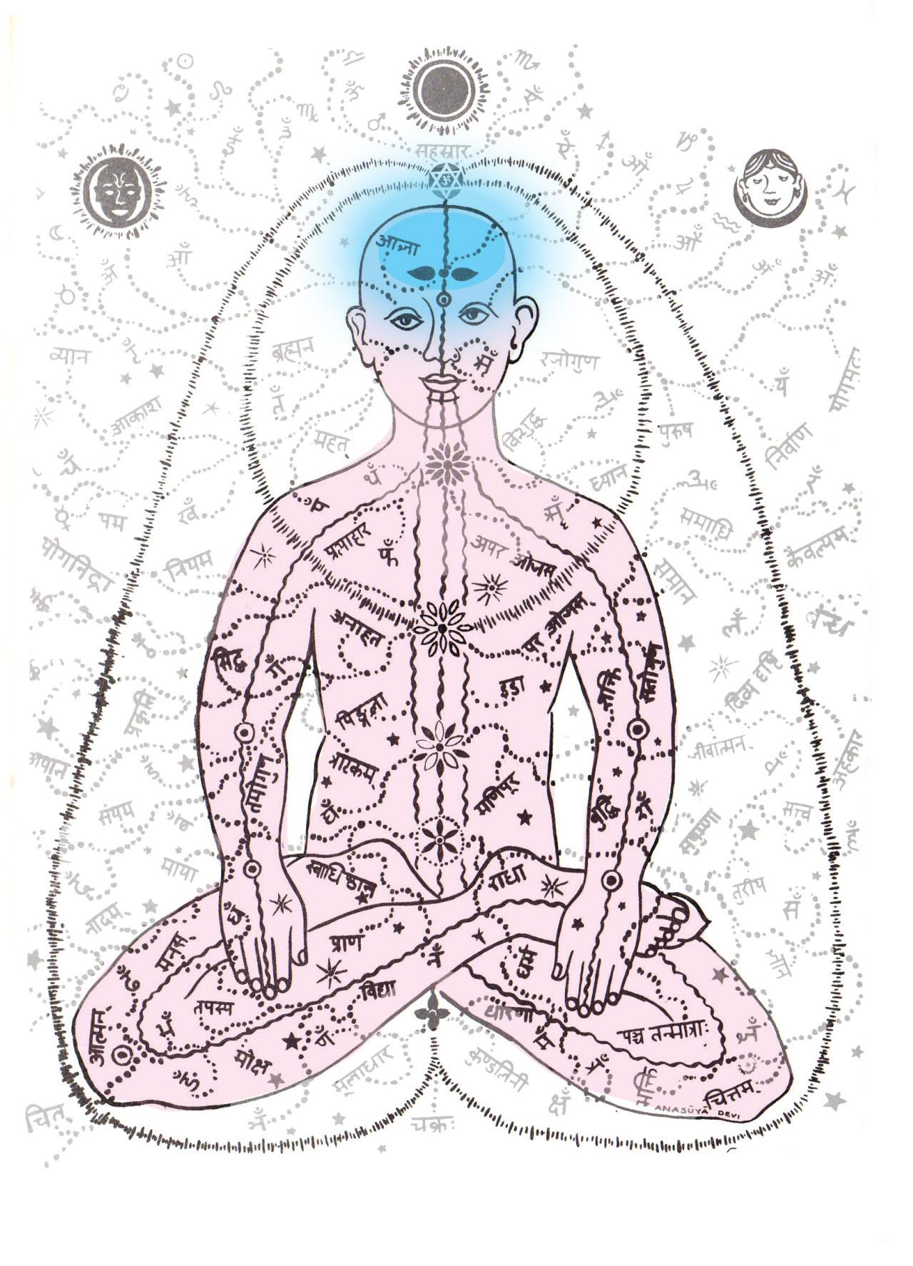ORMUS FOCUS ELIXIR – for work/ study / focus / ADHD & ADD | Lola's Alchemy